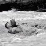 1953 - From Here to Eternity - 02