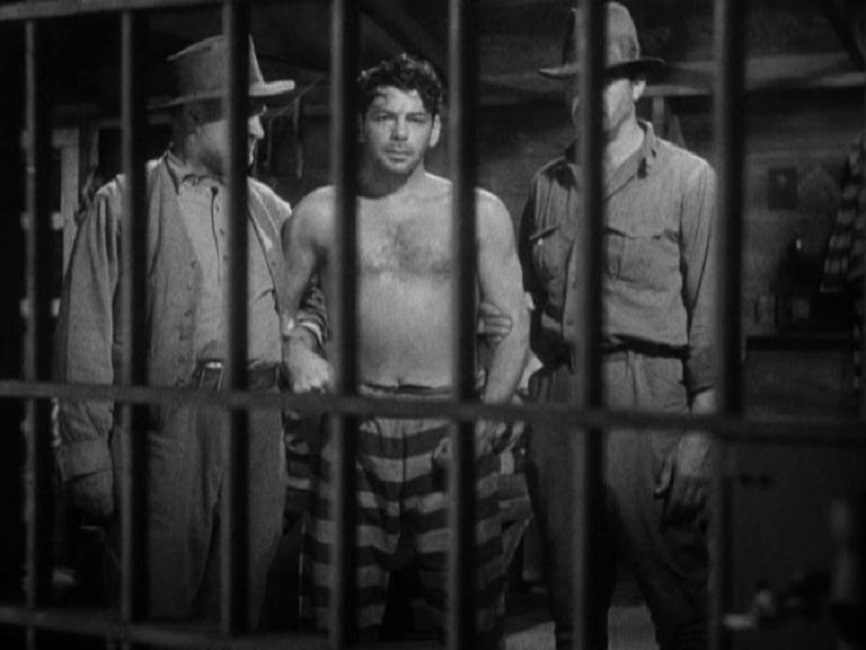 1932 1933 � i am a fugitive from a chain gang � academy