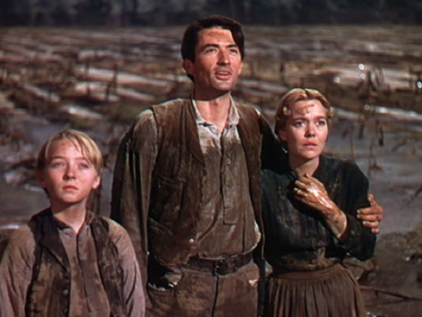 1946 The Yearling on oscar award category