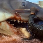 1975 - Jaws - 08