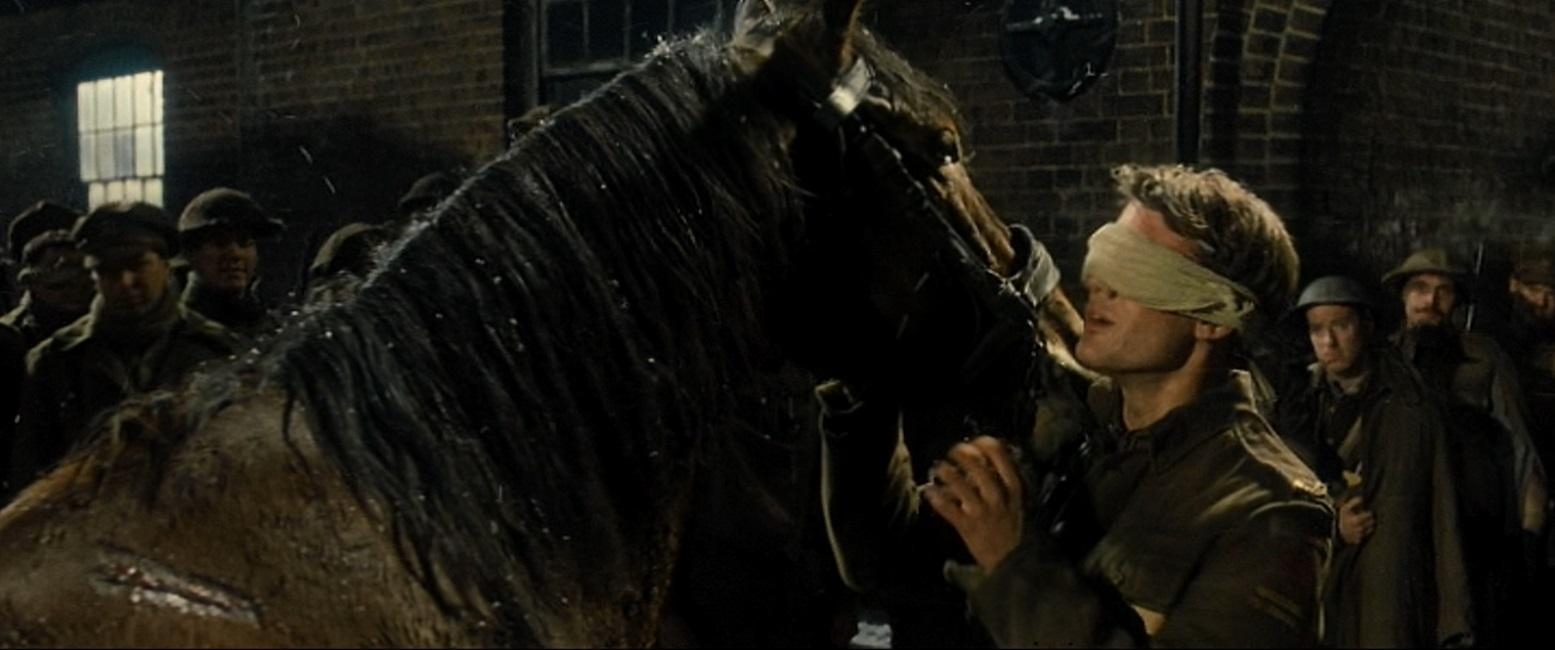 2011 War Horse Academy Award Best Picture Winners